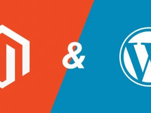 wordpress-magento